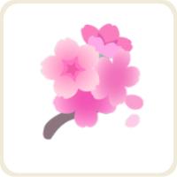 夜桜/ピンク